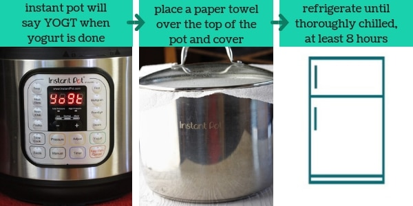 three images showing steps to make easy instant pot vanilla yogurt with text that says instant pot will say YOGT when yogurt is done, place a paper towel over the top of the pot and cover, refrigerate until thoroughly chilled, at least 8 hours