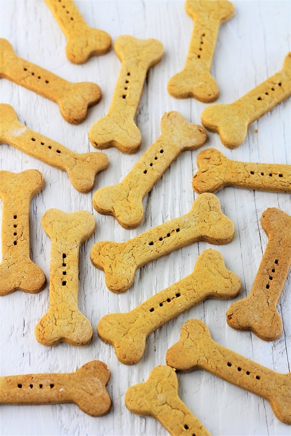 homemade pumpkin peanut butter dog biscuits scattered on a white background