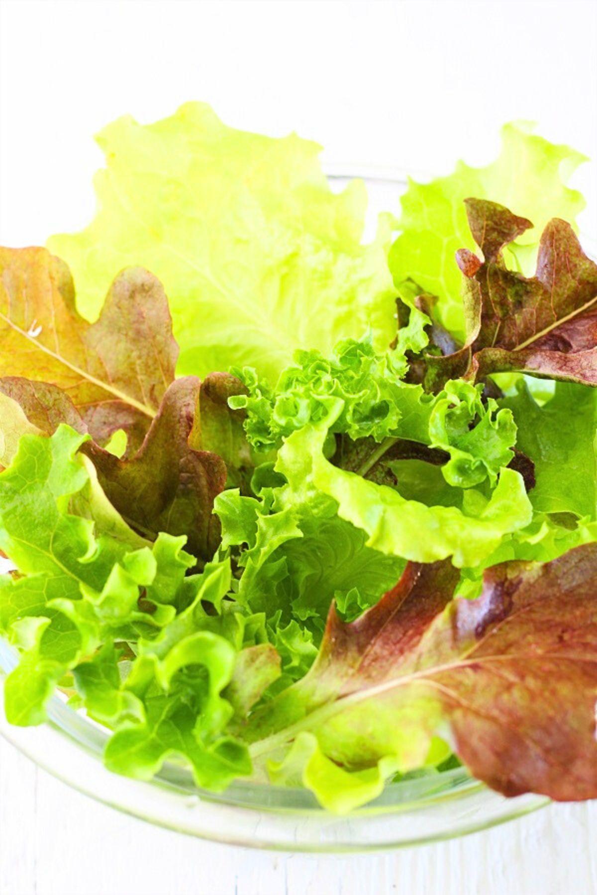 bowl of mesclun salad greens