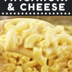 spoonful of macaroni and cheese with a text overlay that says now cook this stove top macaroni and cheese