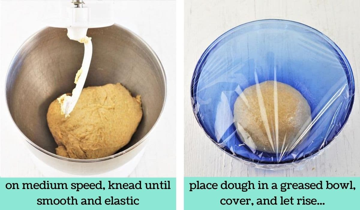 two images showing the steps to make homemade half whole wheat bread